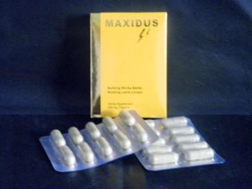 maxidus uk